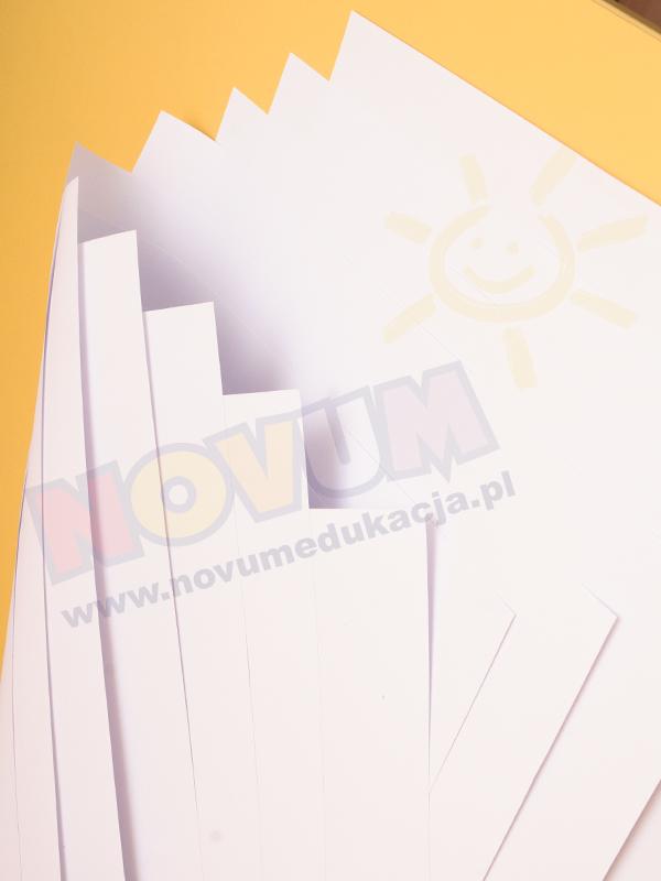 Novum Brystol A1 biały 1 arkusz