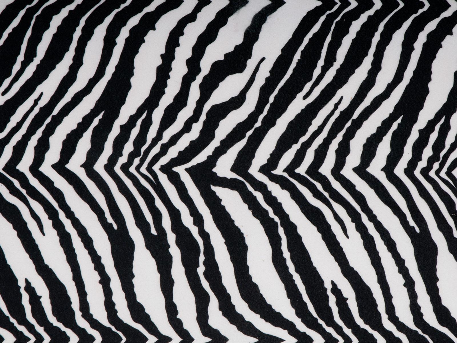 Novum Filc w rolce, zebra