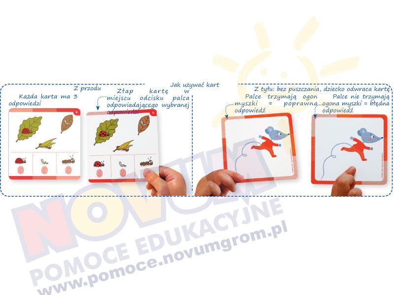 Novum Konfiguracje - karty