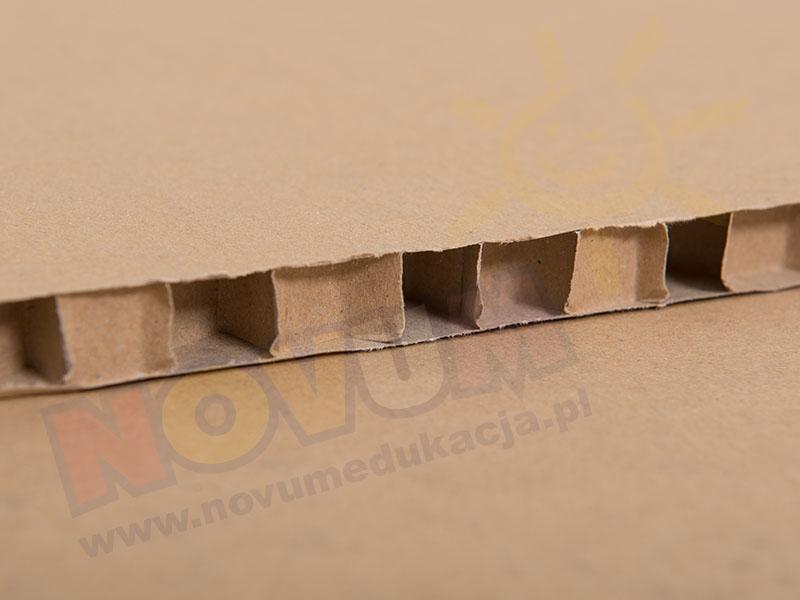 Novum Plaster miodu 500x700x15