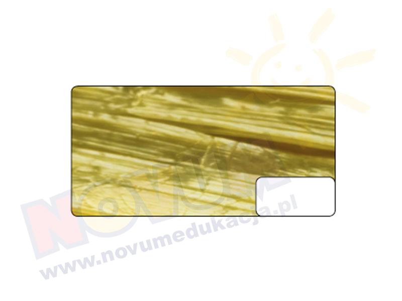 Novum Rafia z połyskiem złota