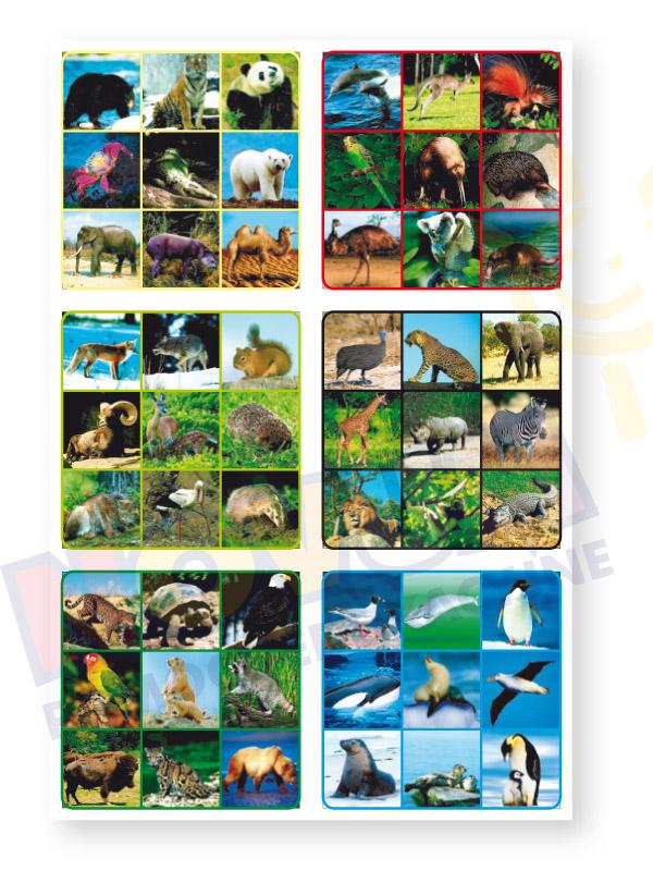 Novum Zwierzęta świata